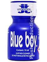 BLUE BOY small